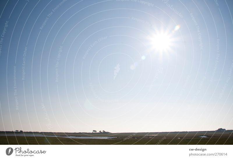 Hiddensee | Flaches Land Himmel Natur blau Ferien & Urlaub & Reisen grün Pflanze Sonne Sommer ruhig Erholung Ferne Landschaft Wiese Frühling See Horizont