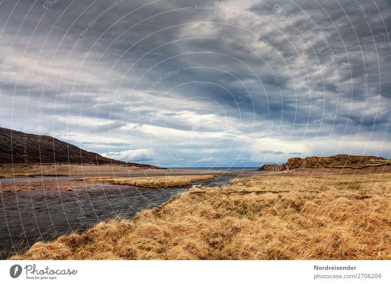 Flussmündung an der Barentssee Himmel Ferien & Urlaub & Reisen Natur Wasser Landschaft Meer Ferne Herbst Frühling Wiese Küste Gras Freiheit Felsen Luft