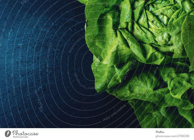Grün auf blau Lebensmittel Salat Salatbeilage Ernährung Bioprodukte Vegetarische Ernährung Diät Fasten frisch Gesundheit lecker natürlich grün Salatblatt