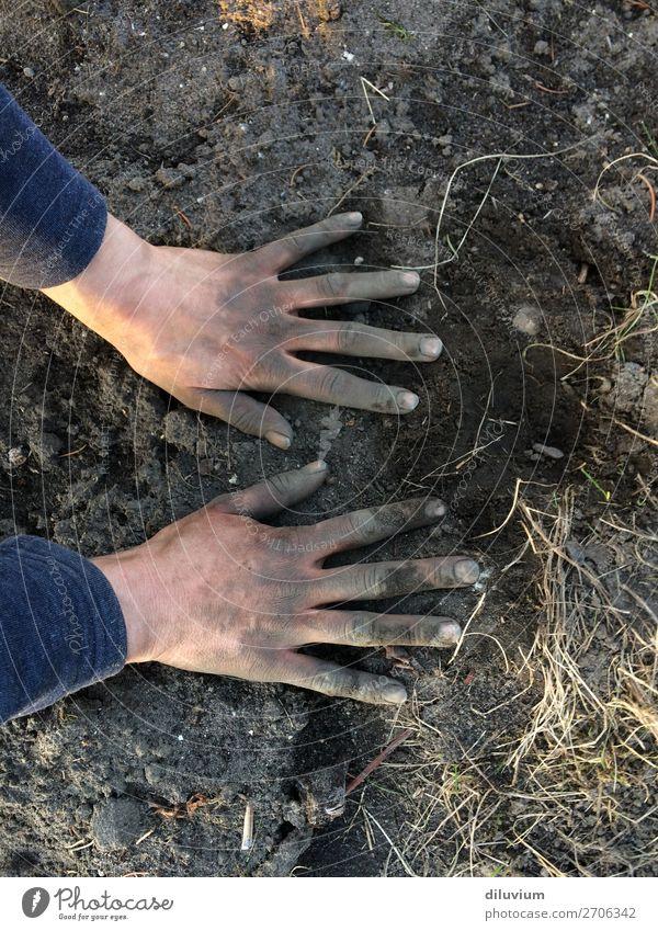 Gartenarbeit Mensch Hand Arbeit & Erwerbstätigkeit Sand frei Feld Erde dreckig Finger Leidenschaft Tatkraft Fingernagel