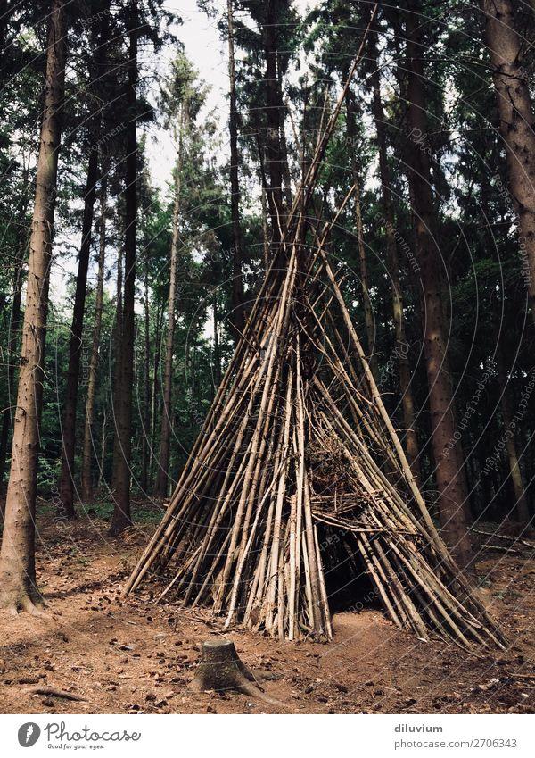 eigenheim Freude Ausflug Abenteuer Wald Waldboden Ast Baumhaus Tipi Holz bauen Häusliches Leben braun Schutz Farbfoto Gedeckte Farben Außenaufnahme Menschenleer