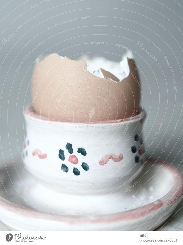 Frühstücksrest Lebensmittel Ei Eierbecher Ernährung braun grau leer Eierschale Farbfoto Innenaufnahme Studioaufnahme Textfreiraum oben Hintergrund neutral