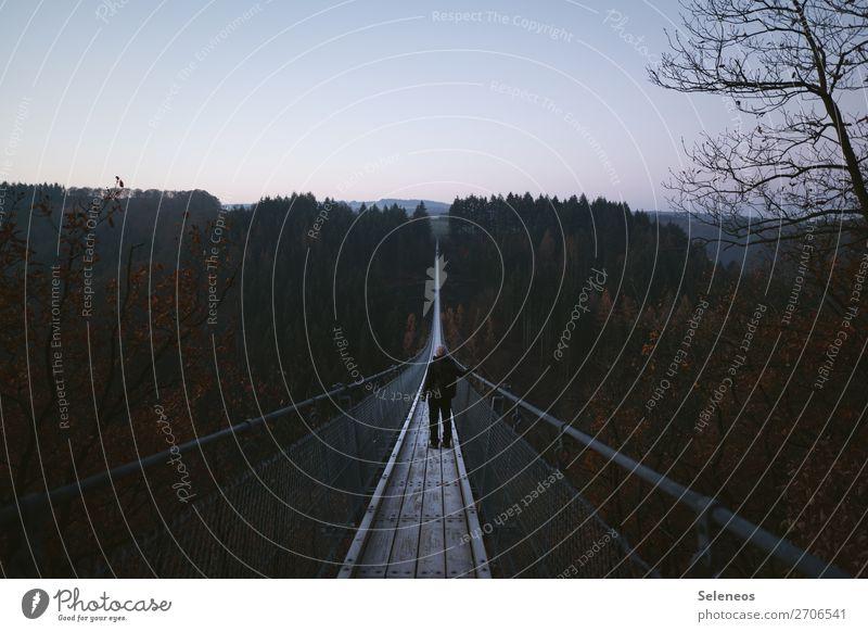 Gratwanderung Mensch Ferien & Urlaub & Reisen Natur Landschaft Wald Winter Ferne Architektur Herbst Umwelt kalt Deutschland Tourismus Freiheit Ausflug Horizont