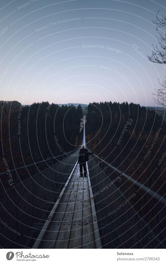 Wandertag wander Winter kalt Person Brücke Hängebrücke Geyerlei Deutschland Wald Schlucht Tourismus Natur Außenaufnahme Landschaft Ferien & Urlaub & Reisen
