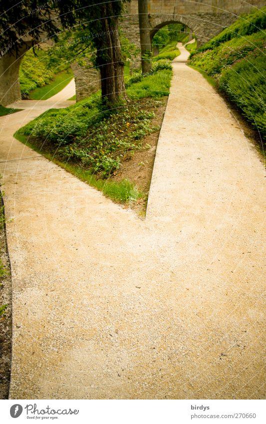 Wie so oft im Leben Baum Pflanze Sommer Frühling Wege & Pfade Park Beginn authentisch Perspektive Brücke Unendlichkeit lang Torbogen Entscheidung Wegkreuzung dual