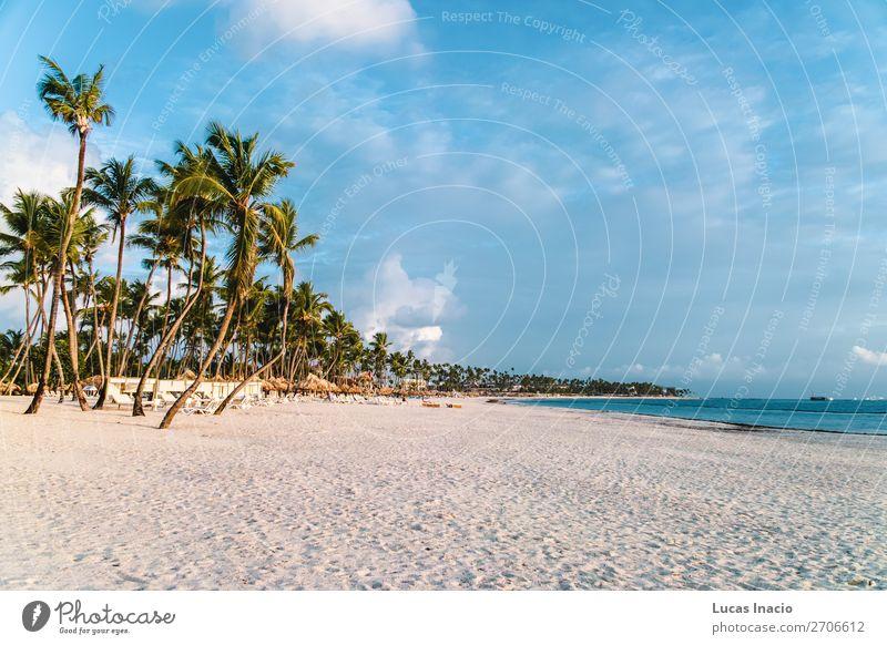 Bavaro Strände in Punta Cana, Dominikanische Republik Ferien & Urlaub & Reisen Tourismus Sommer Strand Meer Insel Umwelt Natur Sand Baum Blatt Küste Fernweh