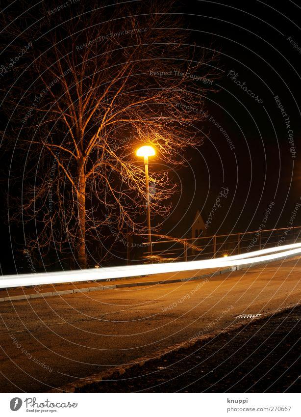 white stripes weiß Baum schwarz gelb Straße Wege & Pfade PKW hell orange Verkehr Geschwindigkeit leuchten fahren Vergänglichkeit rennen Verkehrswege