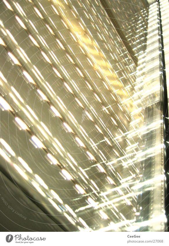 Morgenlicht Sonne Fenster Beleuchtung Häusliches Leben Lichtspiel Rollo Rollladen