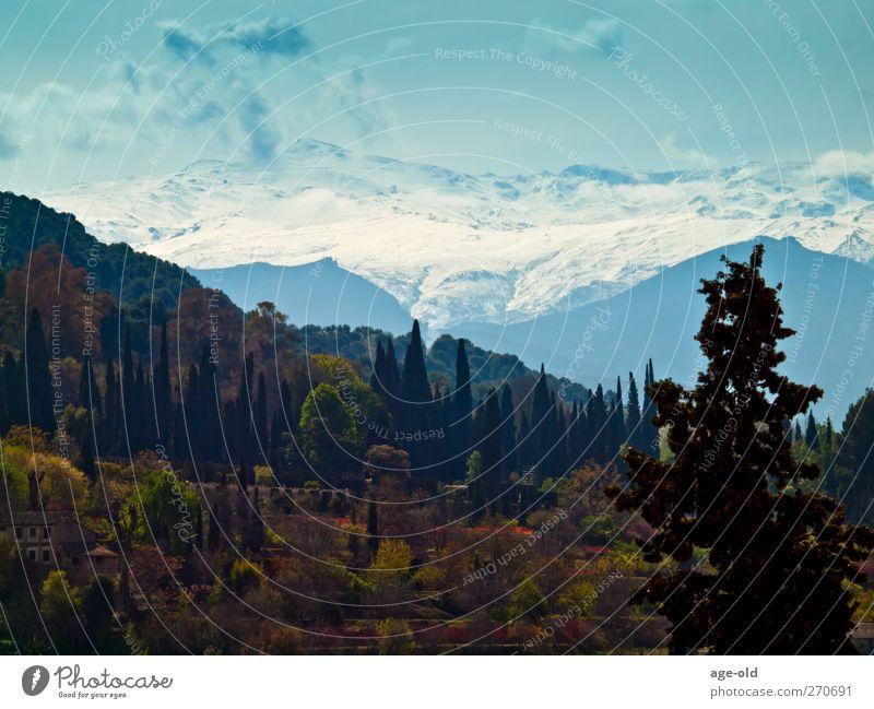 la sierra nevada (andalucia) Himmel Natur blau weiß grün Baum Pflanze Einsamkeit Umwelt Landschaft Berge u. Gebirge Schnee grau braun Klima natürlich
