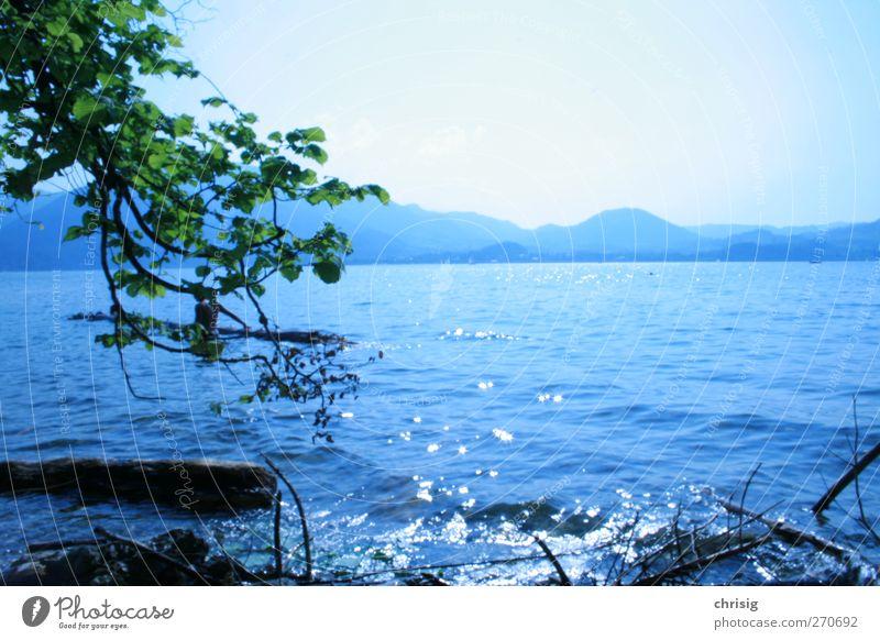 unterm stoa Natur Wasser Sonne Sommer Freude ruhig Erholung Ferne Berge u. Gebirge See Gesundheit Schwimmen & Baden Zufriedenheit Ausflug Tourismus Alpen