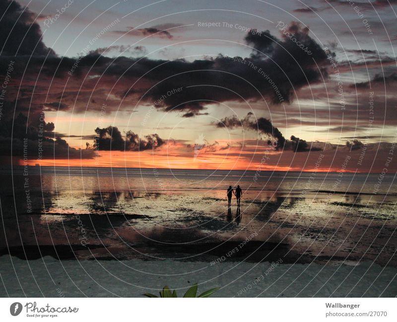 Sonnenuntergang auf Meeru Mensch Meer Strand Ferien & Urlaub & Reisen Liebe Paar Zufriedenheit paarweise Insel Romantik Vergänglichkeit Malediven Afrika