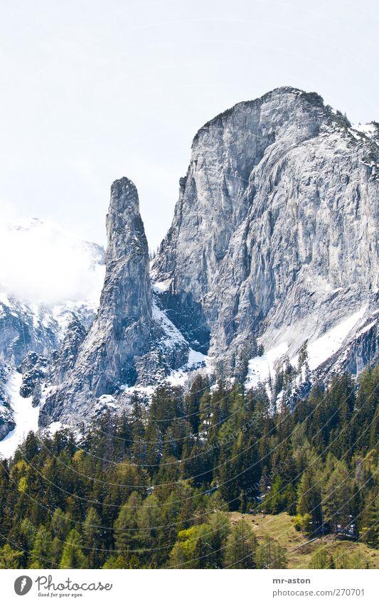 grün-grau Natur Landschaft Pflanze Horizont Frühling Schönes Wetter Schnee Baum Berge u. Gebirge Stein wandern Aggression Ausdauer Abenteuer Farbfoto