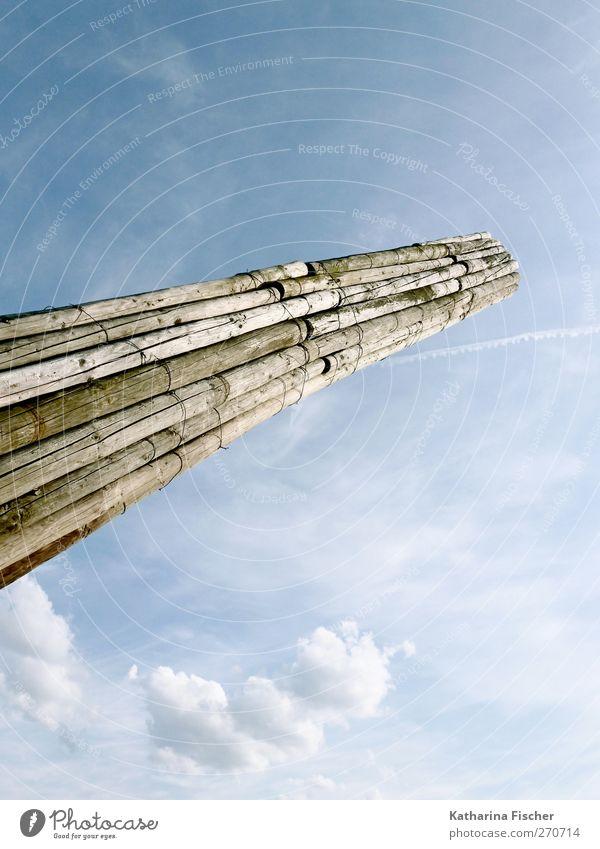 Der schiefe Turm von... Umwelt Natur Himmel Wolken Frühling Sommer Herbst Holz blau braun weiß Licht Baumstamm Rohstoffe & Kraftstoffe Farbfoto Außenaufnahme
