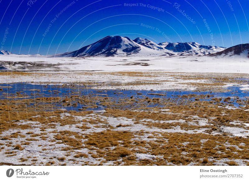 Salzseen und Berge an der Grenze zu Chile und Bolivien Natur Landschaft Berge u. Gebirge Südamerika Abenteuer Farbfoto Außenaufnahme Panorama (Aussicht)