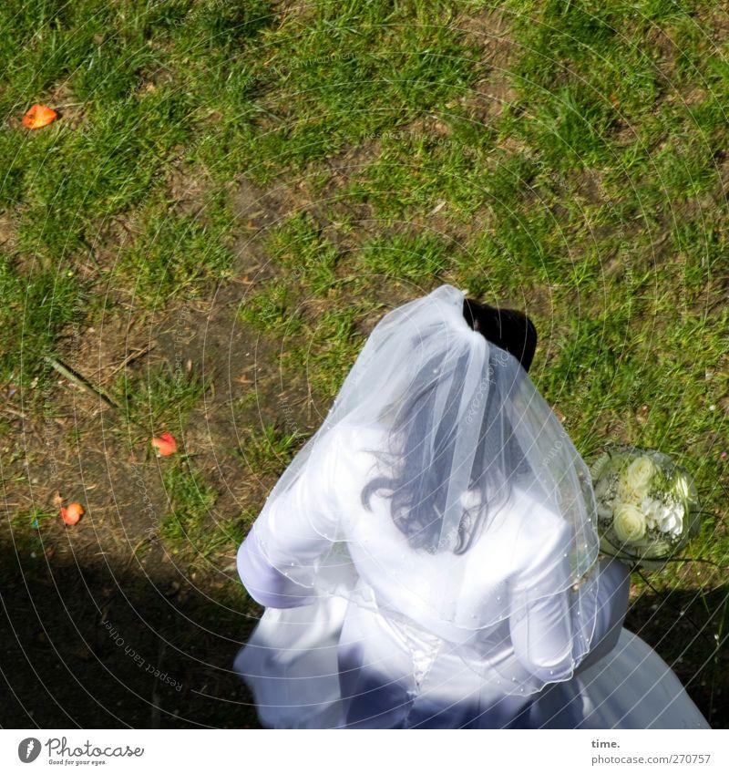 Ganz in weiß feminin 1 Mensch Schönes Wetter Wiese Brautkleid Schleier schwarzhaarig stehen Glück Lebensfreude Abenteuer ästhetisch Frieden Sinnesorgane