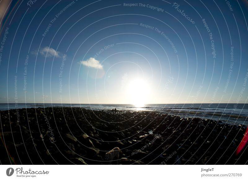 sunseeker Hund Mensch Himmel Natur Jugendliche blau Sonne Strand Tier Wolken schwarz Umwelt Landschaft Spielen Frühling Freiheit