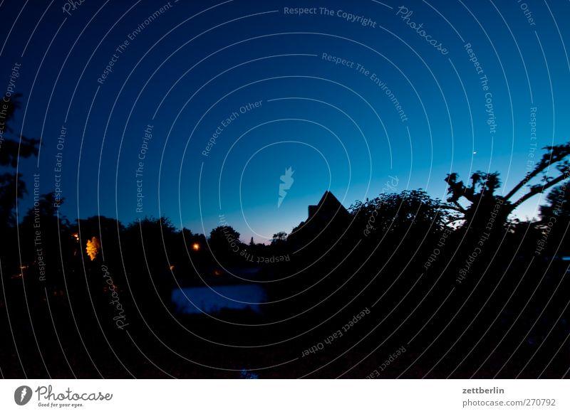 Abends im Gärtchen Erholung Sommer Garten Umwelt Natur Landschaft Himmel Wolkenloser Himmel Klima Klimawandel Wetter Schönes Wetter Baum Blatt Park gut