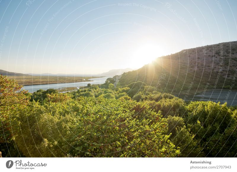 Abend Umwelt Natur Landschaft Pflanze Himmel Wolkenloser Himmel Horizont Sonne Sonnenaufgang Sonnenuntergang Sonnenlicht Sommer Wetter Schönes Wetter Wärme Baum