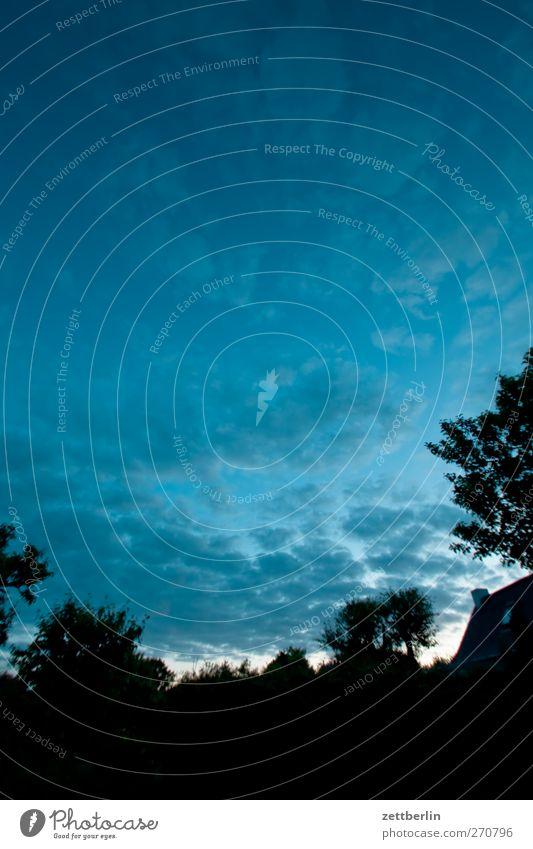 Abends im Gärtchen Erholung Sommer Häusliches Leben Garten Umwelt Natur Landschaft Himmel Wolken Klima Klimawandel Wetter Schönes Wetter Baum Blatt Park Gefühle