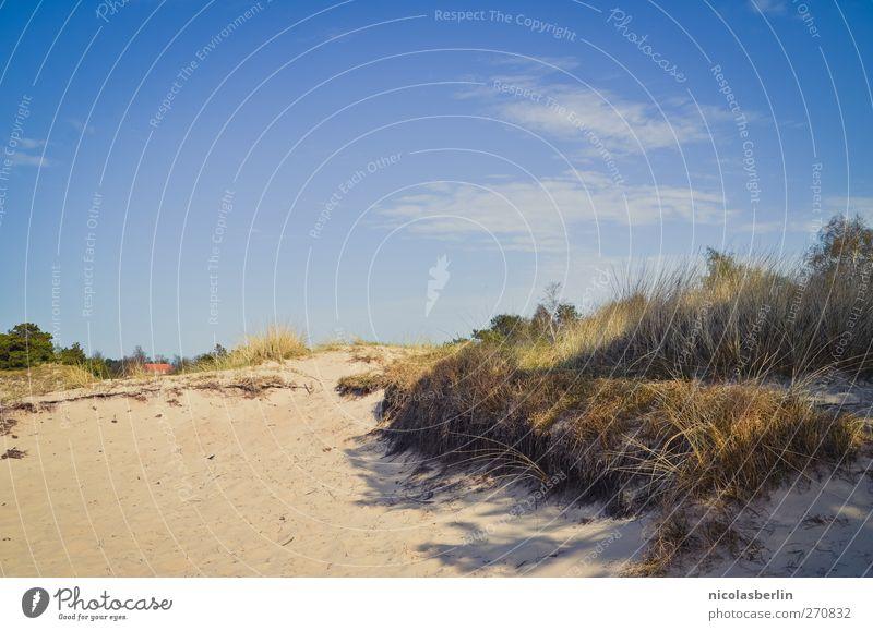 Hiddensee | The Secret Place .:. Himmel Ferien & Urlaub & Reisen Baum Sommer Strand Wolken Umwelt Gras Sand Abenteuer leuchten Schönes Wetter Wüste Kitsch