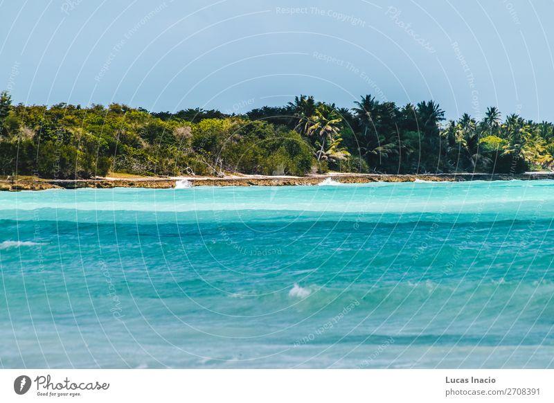 Saona Insel bei Punta Cana, Dominikanische Republik Ferien & Urlaub & Reisen Tourismus Sommer Strand Meer Umwelt Natur Sand Küste Fernweh amerika Amerikaner