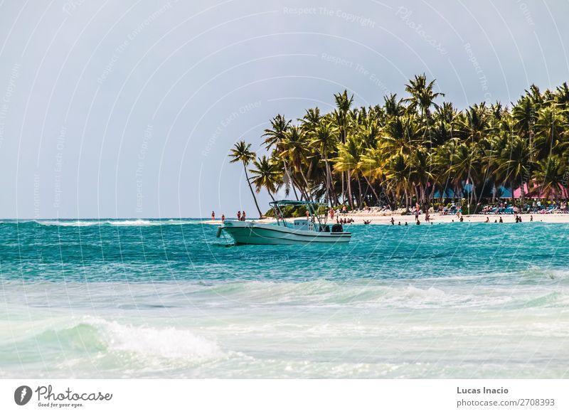 Saona Insel bei Punta Cana, Dominikanische Republik Ferien & Urlaub & Reisen Tourismus Sommer Strand Meer Umwelt Natur Sand Baum Blatt Küste Fernweh amerika