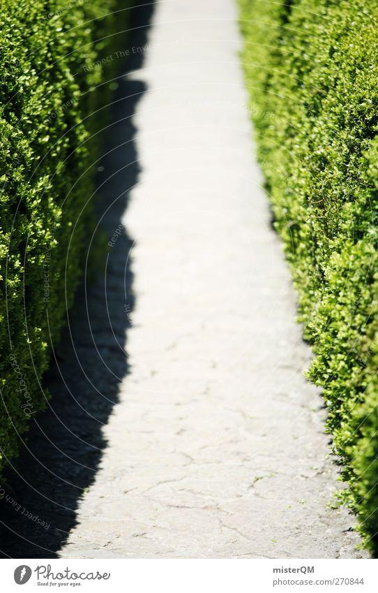 Ab durch die... Kunst ästhetisch Natur Wege & Pfade grün Symmetrie Genauigkeit Schneise Hecke getrimmt Gartenbau Tor Farbfoto Gedeckte Farben Außenaufnahme