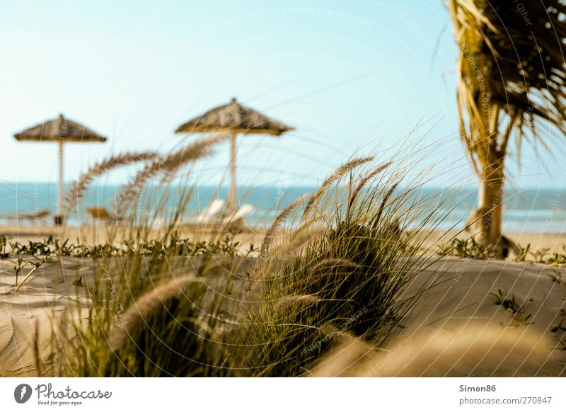 Sommer dream Himmel Natur blau Wasser Ferien & Urlaub & Reisen Meer Strand Erholung Landschaft Gefühle Küste Sand Horizont Freizeit & Hobby Tourismus