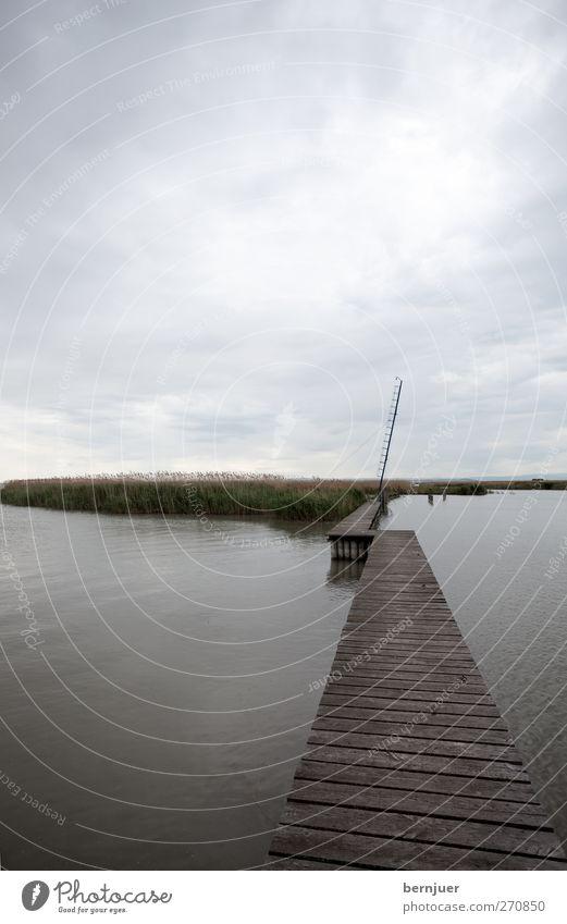Schmalspur Himmel Natur Wasser Pflanze Sommer Wolken Landschaft Holz Wege & Pfade Küste See braun Regen Insel Hafen Seeufer