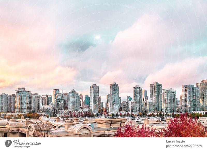 Herbstlicher Sonnenuntergang in Downtown Vancouver, Kanada Insel Haus Büro Business Umwelt Natur Himmel Wolken Baum Blatt Fluss Stadtzentrum Skyline Hochhaus