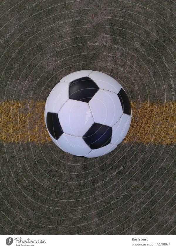 Das Runde ist im Eckigen enthalten. Freude Wiese Sport Spielen Gras Bewegung Linie Fußball Freizeit & Hobby Erfolg Fitness Leidenschaft sportlich Veranstaltung