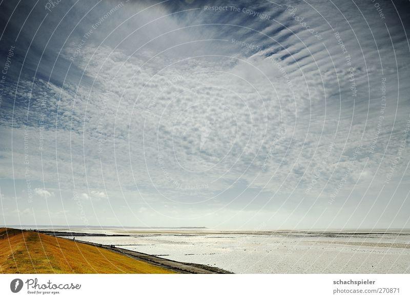 Deich - Watt - Föhr Erholung ruhig Ferien & Urlaub & Reisen Ferne Sommer Strand Meer Insel Natur Landschaft Wasser Himmel Wolken Nordsee blau weiß Tourismus
