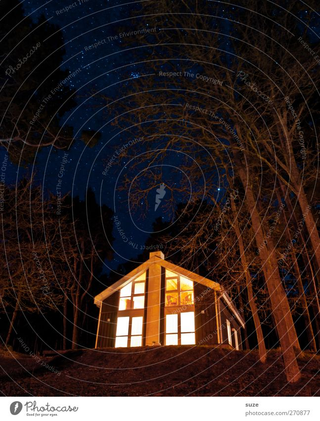 Guten Abend, gute Nacht ... Ferien & Urlaub & Reisen Haus Umwelt Natur Landschaft Urelemente Nachthimmel Stern Baum Wald Einfamilienhaus Hütte leuchten dunkel