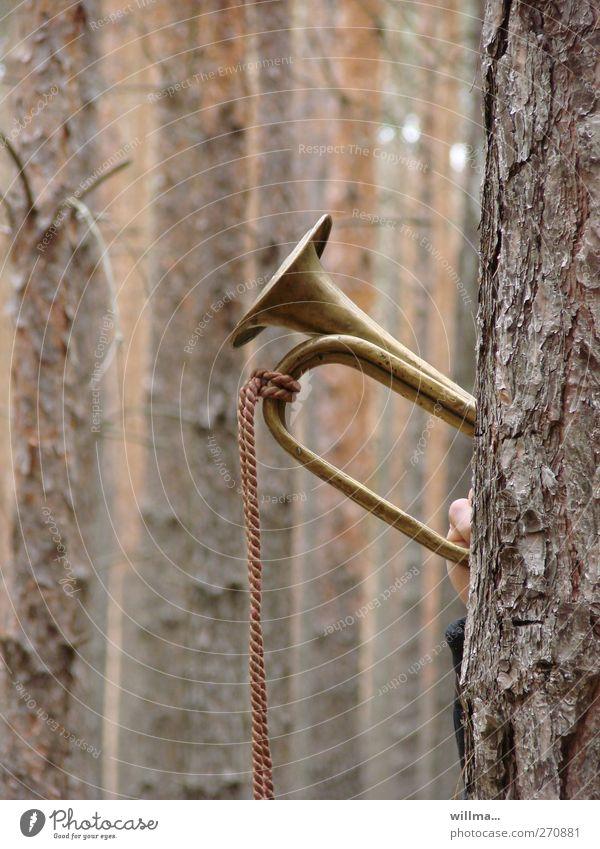 Wie man in den Wald hineinruft, so schallt es heraus Trompete Trompeter Blasinstrumente blasen Clairon Signalhorn Blechblasinstrumente Natur Baum Baumrinde Jagd