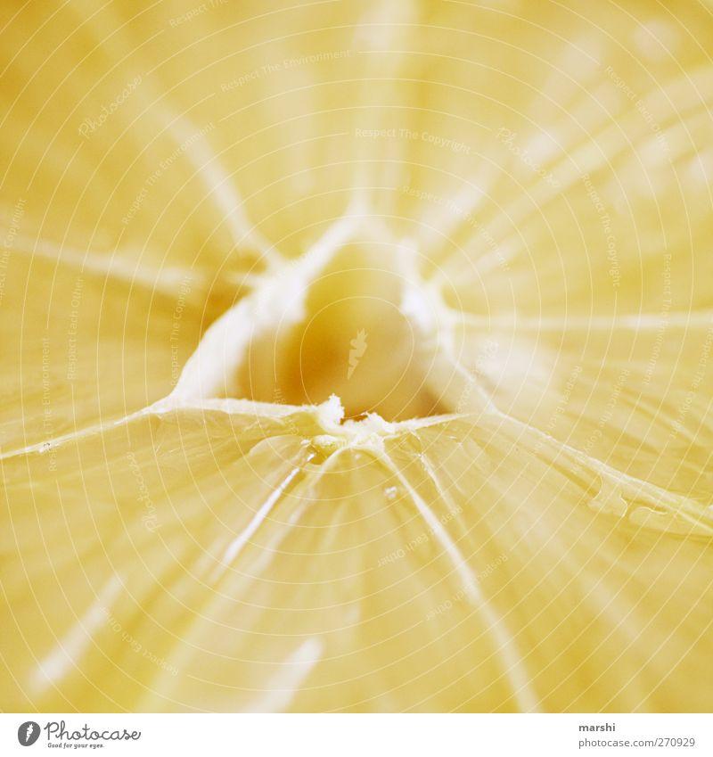 > sauer < Lebensmittel Frucht Ernährung gelb Zitrone zitronengelb Zitronenscheibe Dreieck Zitrusfrüchte frisch Farbfoto Nahaufnahme Detailaufnahme Makroaufnahme