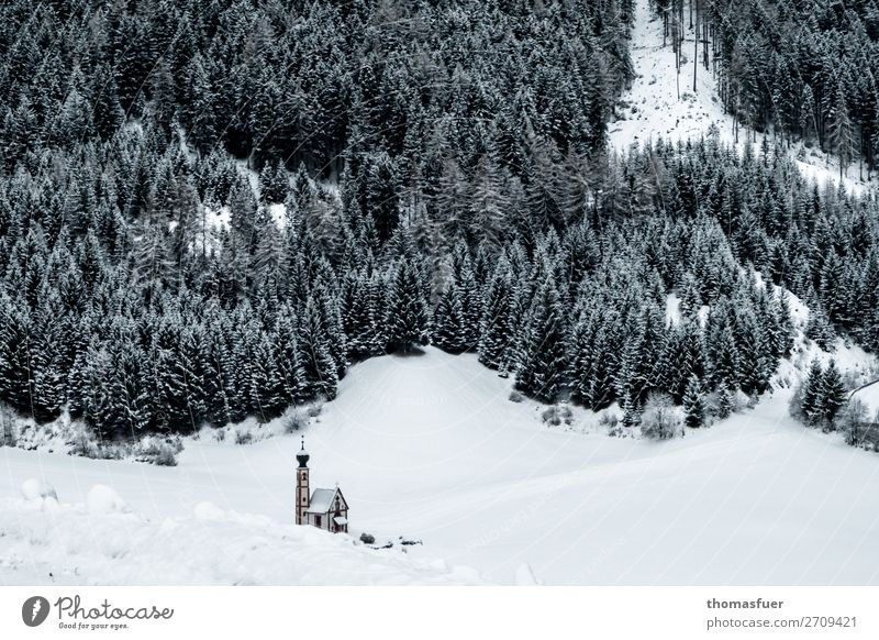 kleine Kapelle, große Berge Natur Weihnachten & Advent Landschaft Baum Einsamkeit Wald Winter Berge u. Gebirge kalt Schnee Stimmung Zufriedenheit Eis Kirche