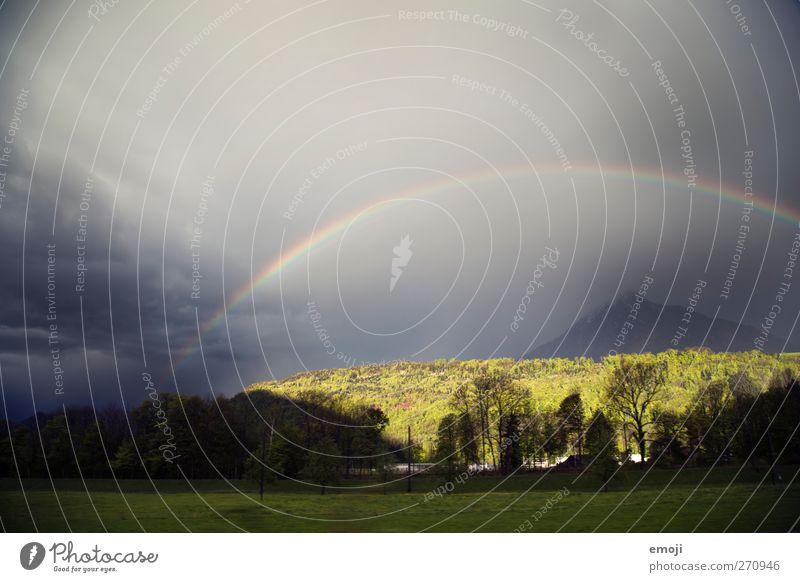 nicht genug kriegen können Umwelt Himmel Wolken Klima schlechtes Wetter Unwetter Sturm Feld Wald außergewöhnlich Regenbogen Naturphänomene Naturgewalt