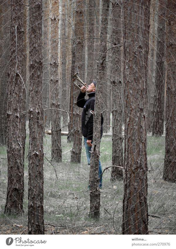 Ein Mann steht mitten im Wald und bläst Trompete Erwachsene Mensch Musik Musiker Trompeter Signalhorn Clairon lautstark blasen Blasinstrumente