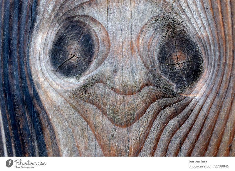 Holterdipolter | Poltergeist Natur Freude Gesicht Holz Umwelt Gefühle Kunst außergewöhnlich Kopf Lächeln fantastisch Coolness Zeichen Figur skurril bizarr