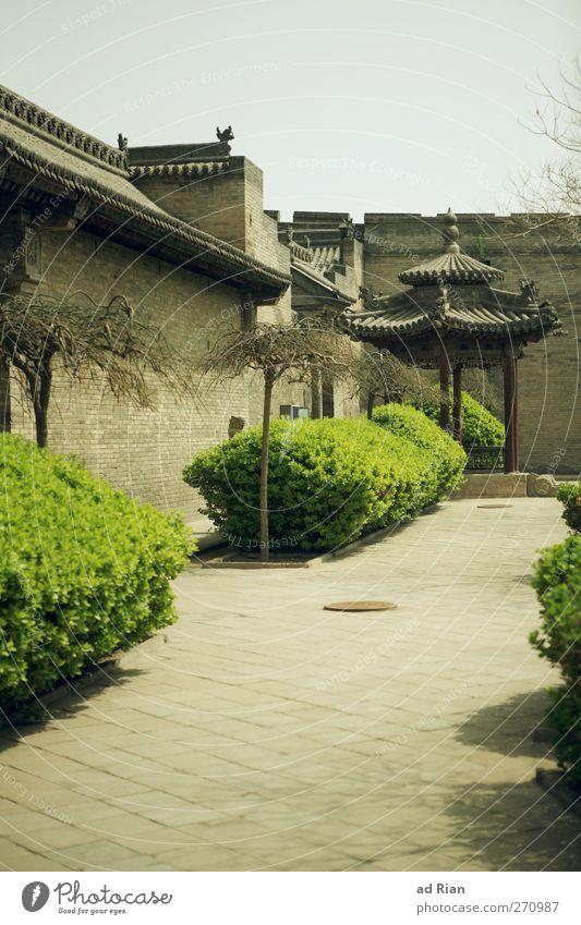 schinesisch alt Stadt Baum Pflanze Haus Wand Frühling Mauer Park Fassade Dach Sträucher Dorf historisch Skyline China