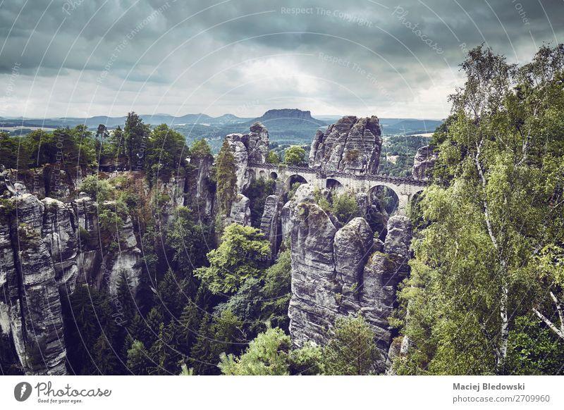 Ferien & Urlaub & Reisen Natur grün Landschaft Baum Wald Berge u. Gebirge Deutschland Tourismus Felsen Ausflug wandern Park retro Aussicht Europa