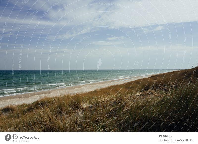 Kattegat Umwelt Natur Landschaft Wasser Himmel Wolken Sonne Sommer Klima Wetter Wind Wellen Küste Seeufer Strand Ostsee atmen Bewegung schaukeln nachhaltig
