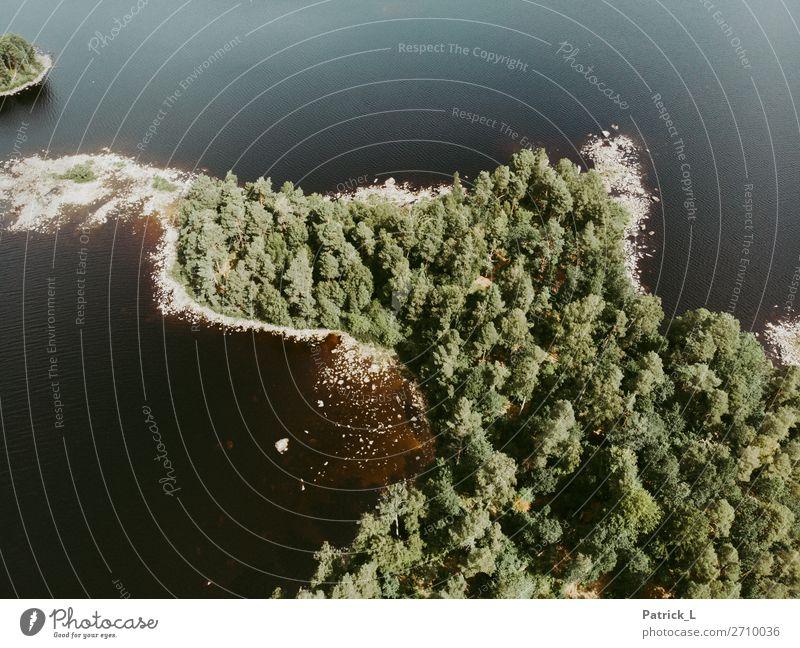 Inseltraum Ferien & Urlaub & Reisen Natur Sommer grün Wasser Landschaft Baum Einsamkeit ruhig Wald Umwelt natürlich See Zufriedenheit Europa Kraft