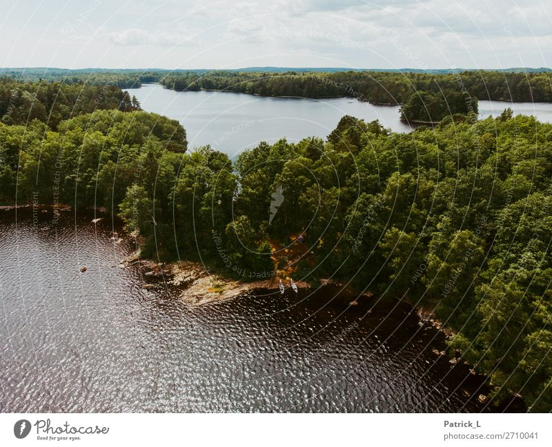 Abenteuerschweden Natur Landschaft Wasser Sommer Schönes Wetter Wald Insel frei Unendlichkeit Wärme grün Kraft Mut Gelassenheit ruhig Fernweh Erholung Stimmung