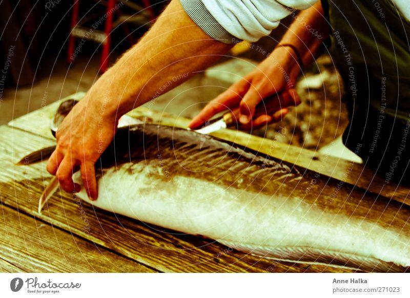 Lengfisch filetieren in Alt Arme Hand 1 Mensch Totes Tier Fisch fangen Fressen Meer Angeln Köder Schweinefilet Messer Schwimmhilfe kochen & garen Braten