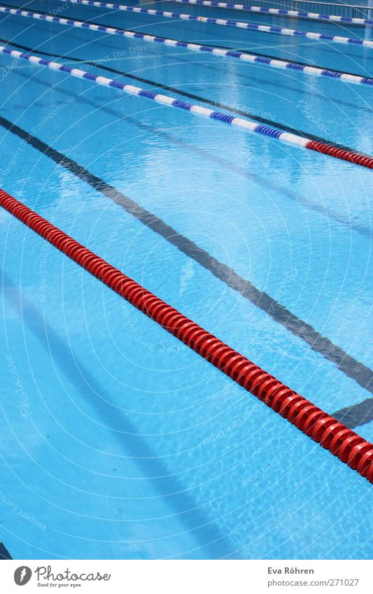 Freie Bahn sportlich Fitness Schwimmen & Baden Freizeit & Hobby Sommer Sport Wassersport Schwimmbad Freibad Barriere Bewegung Flüssigkeit kalt Sauberkeit blau