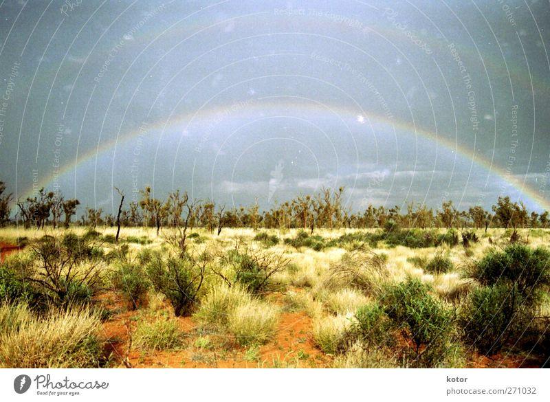 all the way across the sky Natur schön Pflanze Sonne Sommer Wolken Umwelt Landschaft Sand Luft Horizont Stimmung Erde Zufriedenheit Abenteuer Wassertropfen