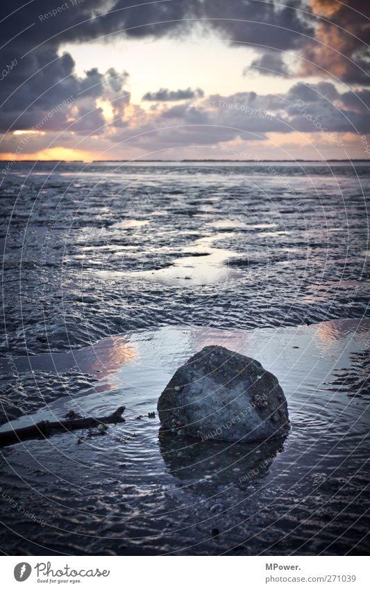 ...da tut sich noch watt meer Umwelt Natur Wasser Wolken Horizont Seeufer kalt Meer Wattenmeer Stein Schnecke Wellen Nordsee Sand Schlamm Sonnenuntergang
