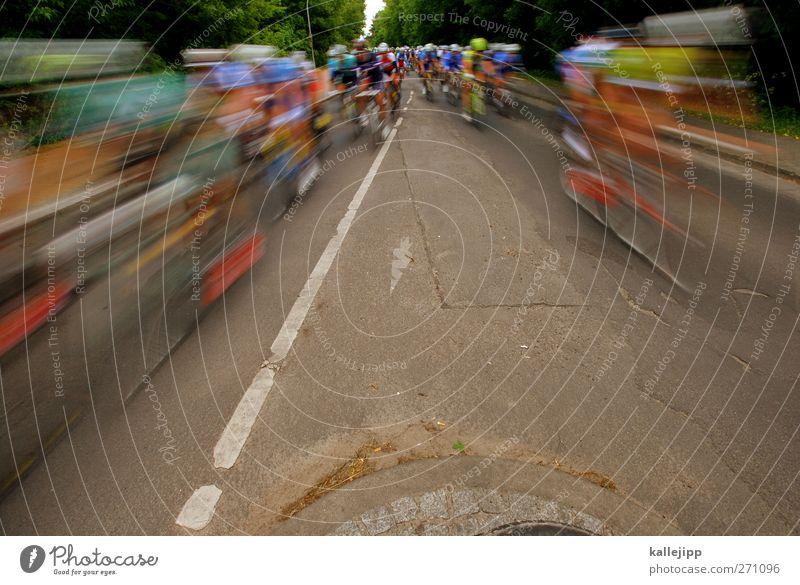 kilometerfresser Mensch Mann Jugendliche Erwachsene Straße Wege & Pfade Fahrrad Freizeit & Hobby maskulin 18-30 Jahre Erfolg Verkehr Geschwindigkeit Lifestyle