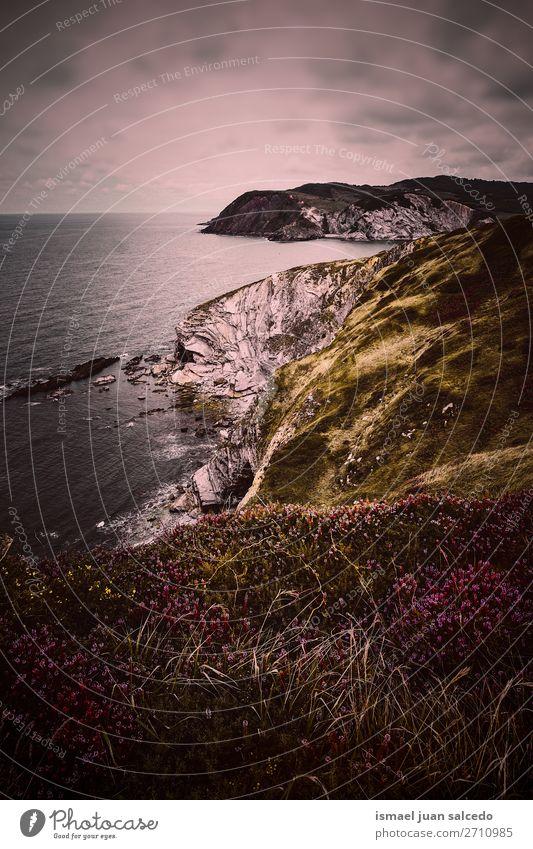 Klippe und Meer an der Küste in der Natur Felsen Wasser Strand Außenaufnahme Ferien & Urlaub & Reisen Ausflugsziel Platz Landschaft Horizont Hintergrund Tapete